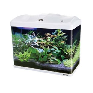 Boyu Akvarium - LED - Vit - 66L